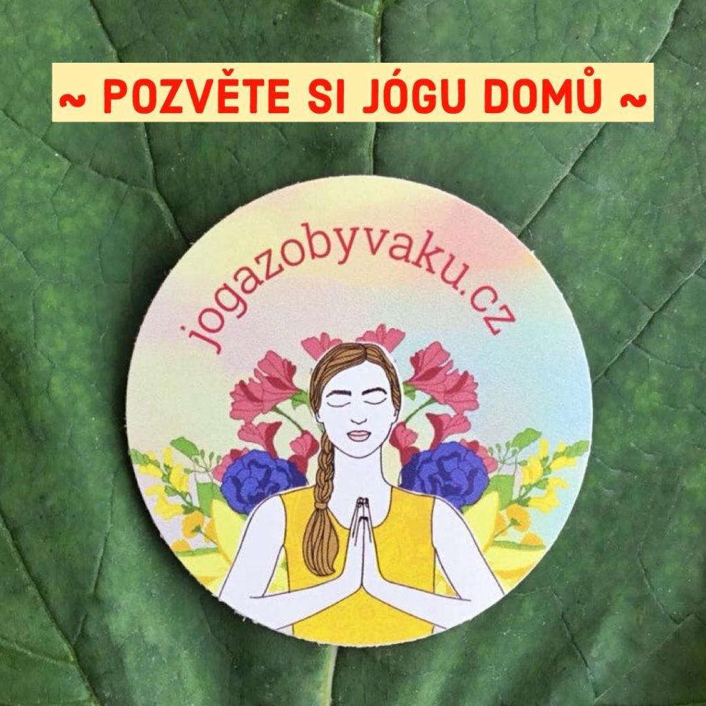 Cvičení jógy online doma podle videí snej českými lektory jógy - lekce jógy pro začátečníky ipokročilé jogíny.
