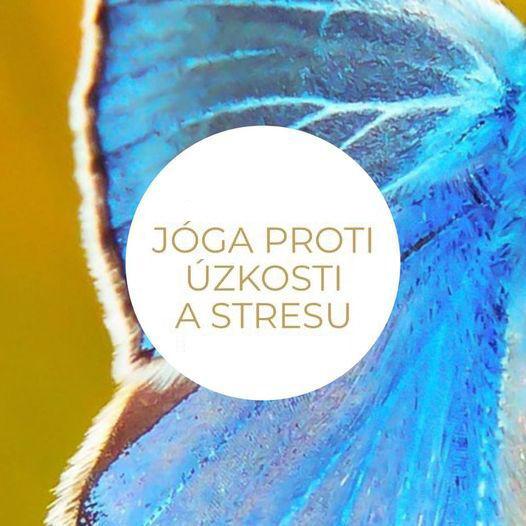 Balíček jóga videí pro domácí cvičení proti stresu aúzkosti od Jógy zobýváku.