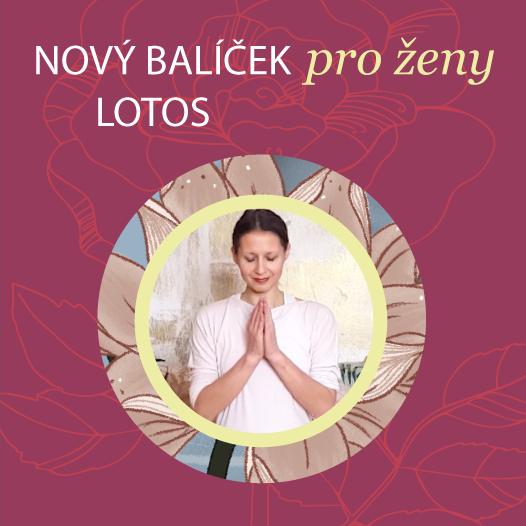 Balíček pro domácí cvičení jógy pro ženy obsahuje jógu pro srovnání hormonálního systému, jógu pro menstruaci, jógu pro menopauzu ajógu pro dobrý spánek.